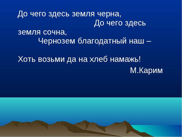 До чего здесь земля черна, До чего здесь земля сочна, Чернозем благодатный н...