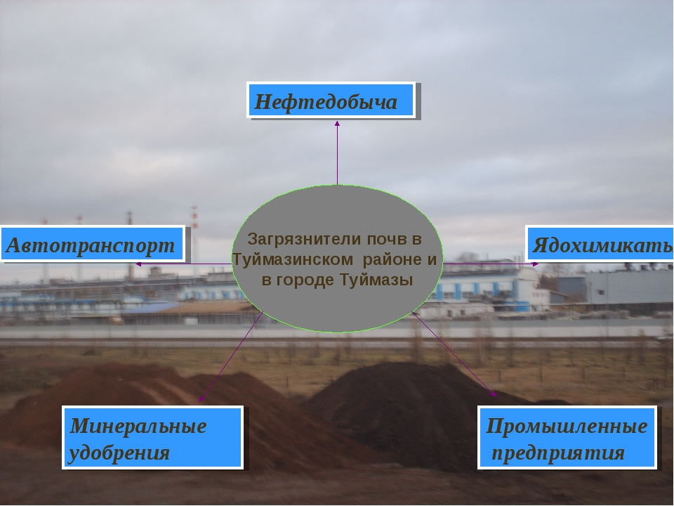 Загрязнители почв в Туймазинском районе и в городе Туймазы Нефтедобыча Ядохим...