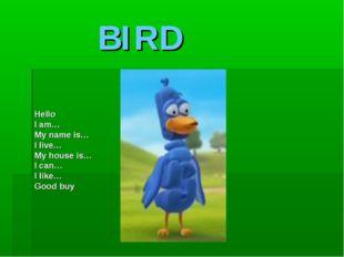 BIRD Hello I am… My name is… I live… My house is… I can… I like… Good buy