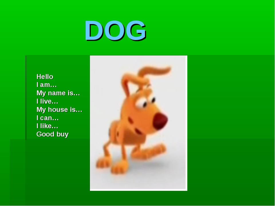 DOG Hello I am… My name is… I live… My house is… I can… I like… Good buy