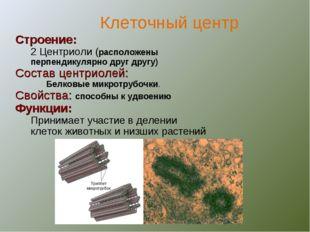 Строение: 2 Центриоли (расположены перпендикулярно друг другу) Состав центрио