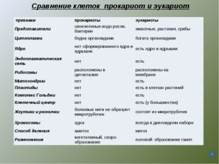 Сравнение клеток прокариот и эукариот признакипрокариотыэукариоты Представ
