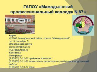 "Адрес 422165, Мамадышский район, совхоз ""Мамадышский"", ул. К.Насыйри, 3 Элек"