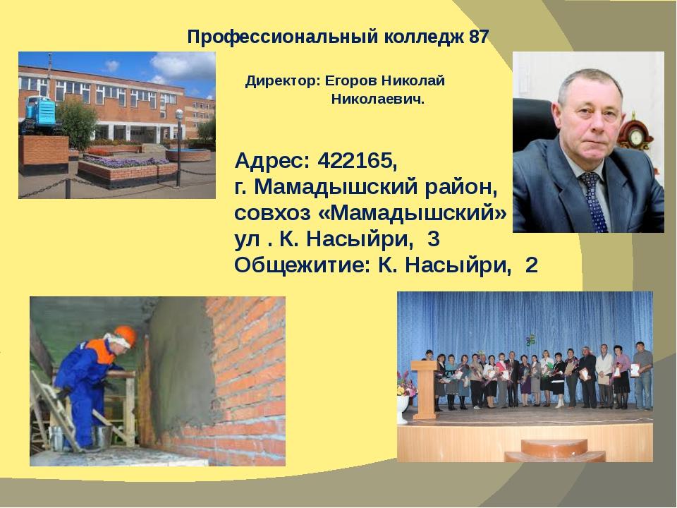 Профессиональный колледж 87 Адрес: 422165, г. Мамадышский район, совхоз «Мама...