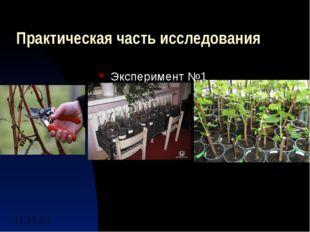 Практическая часть исследования Эксперимент №1