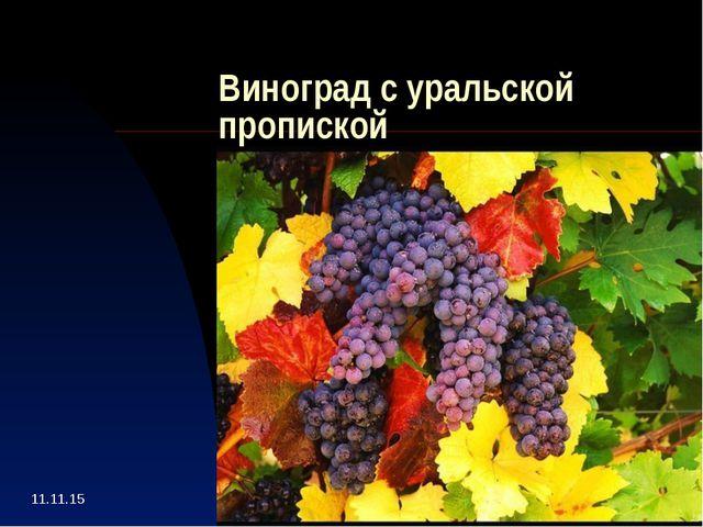 Виноград с уральской пропиской Пользователь