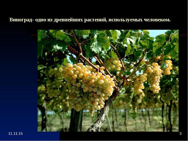 Виноград- одно из древнейших растений, используемых человеком.