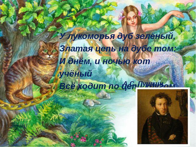 У лукоморья дуб зелёный, Златая цепь на дубе том: И днём, и ночью кот учёный...