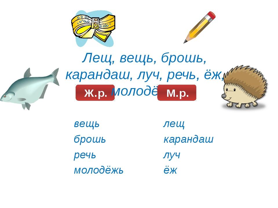 Лещ, вещь, брошь, карандаш, луч, речь, ёж, молодёжь. вещь брошь речь молодёж...