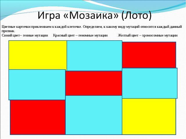 Цветные карточки приклеиваем к каждой клеточке. Определяем, к какому виду мут...