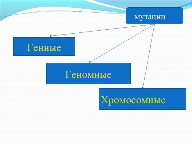 Генные Геномные Хромосомные мутации