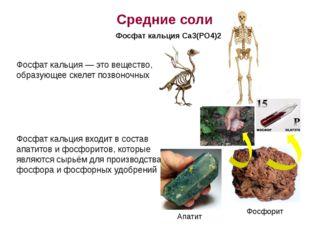 Фосфат кальция — это вещество, образующее скелет позвоночных Фосфат кальция в