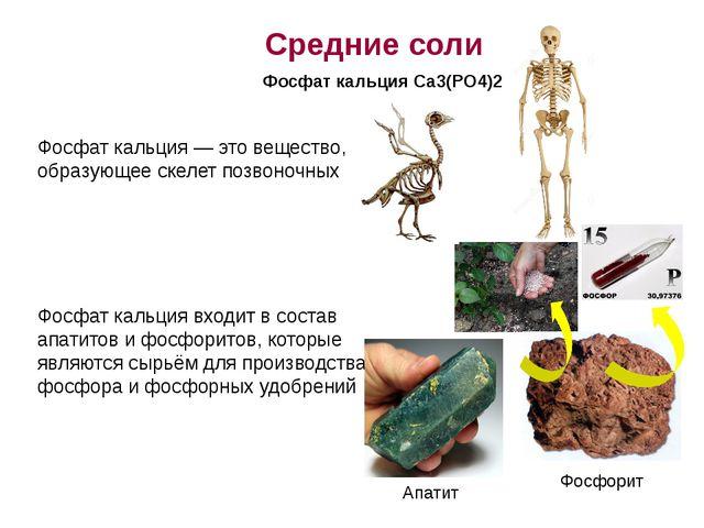 Фосфат кальция — это вещество, образующее скелет позвоночных Фосфат кальция в...