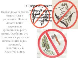Необходимо бережно относиться к растениям. Нельзя ломать ветки деревьев и ку