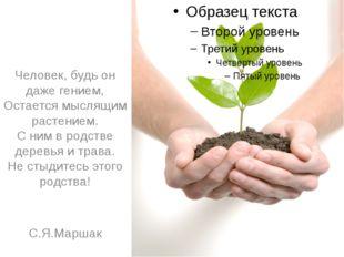 Человек, будь он даже гением, Остается мыслящим растением. С ним в родстве д