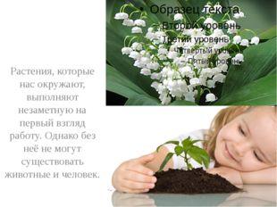 Растения, которые нас окружают, выполняют незаметную на первый взгляд работу