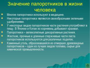 Папоротники Красной книги России Сальвиния плавающая Щитовник гребенчатый Фег