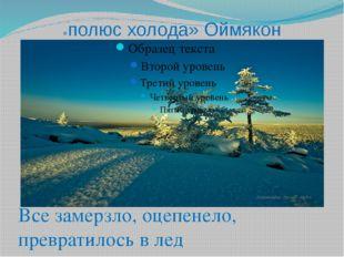 «полюс холода» Оймякон Все замерзло, оцепенело, превратилось в лед