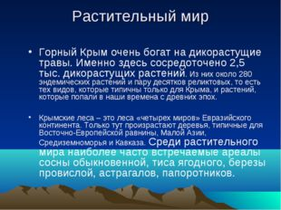 Растительный мир Горный Крым очень богат на дикорастущие травы. Именно здесь