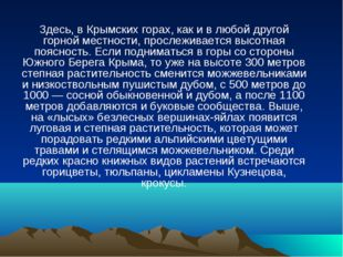 Здесь, в Крымских горах, как и в любой другой горной местности, прослеживаетс