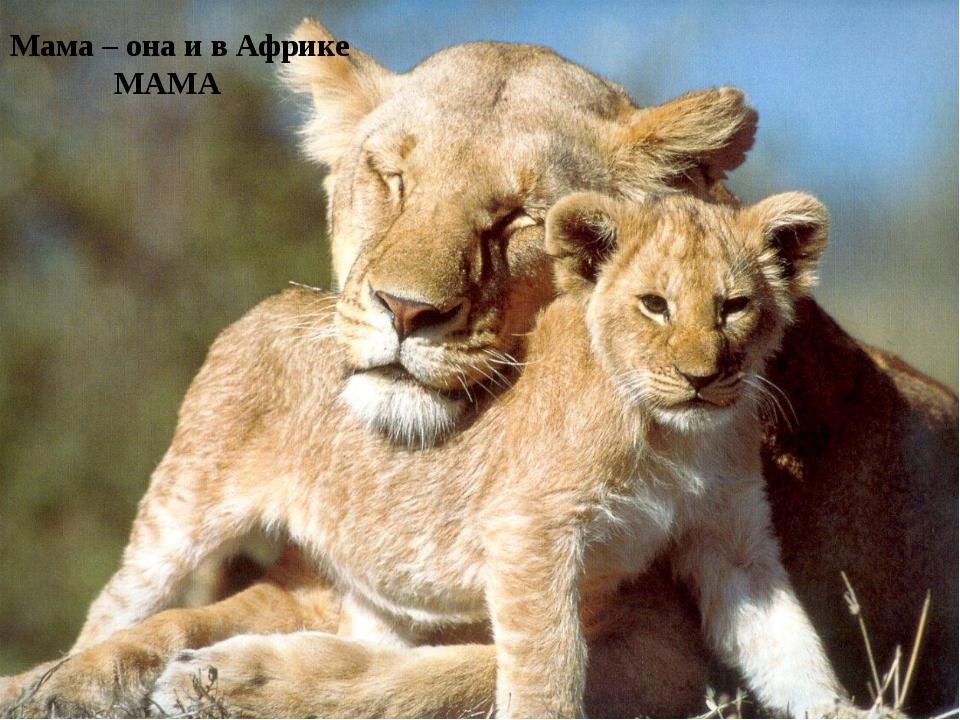 Мама – она и в Африке МАМА