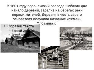 В 1601 году воронежский воевода Собакин дал начало деревни, заселив на берега