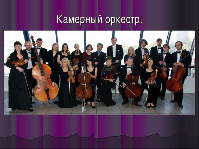 Камерный оркестр.