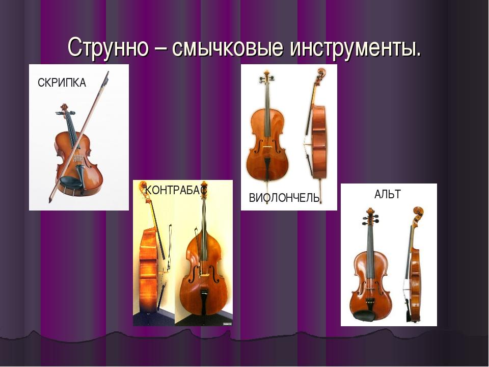 Струнно – смычковые инструменты. СКРИПКА КОНТРАБАС ВИОЛОНЧЕЛЬ АЛЬТ