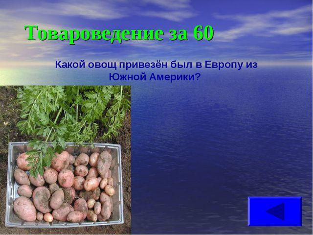 Товароведение за 60 Какой овощ привезён был в Европу из Южной Америки?