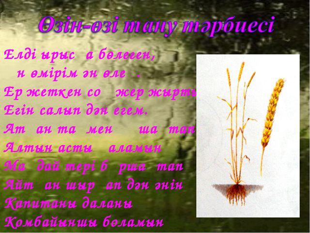 Елді ырысқа бөлеген, Ән өмірім ән өлең. Ер жеткен соң жер жыртып, Егін салып...