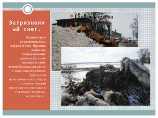 Загрязненный снег. Индикатором загрязнения воды служит и снег. Вредные вещест