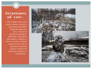 Загрязненный снег. При таянии снега вода уйдёт в почву, а из неё в растения,