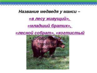 Название медведя у манси – «в лесу живущий», «младший братик», «лесной собрат