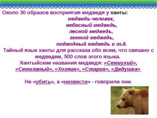 Около 30 образов восприятия медведя у ханты: медведь-человек, небесный медвед
