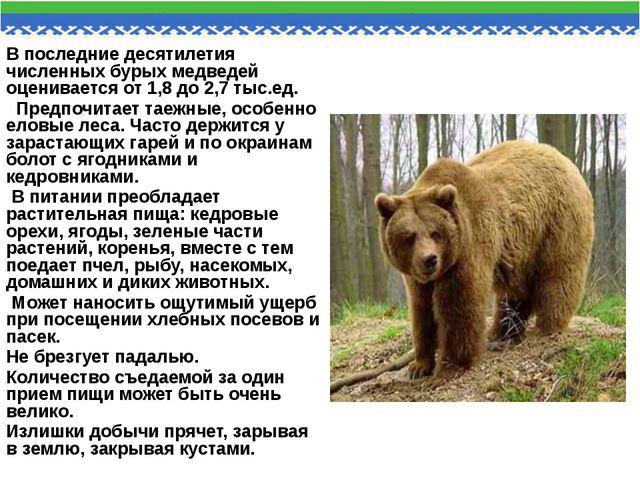 В последние десятилетия численных бурых медведей оценивается от 1,8 до 2,7 ты...