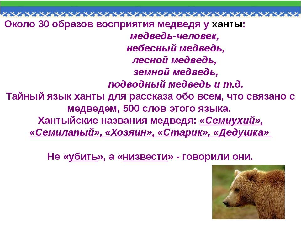 Около 30 образов восприятия медведя у ханты: медведь-человек, небесный медвед...