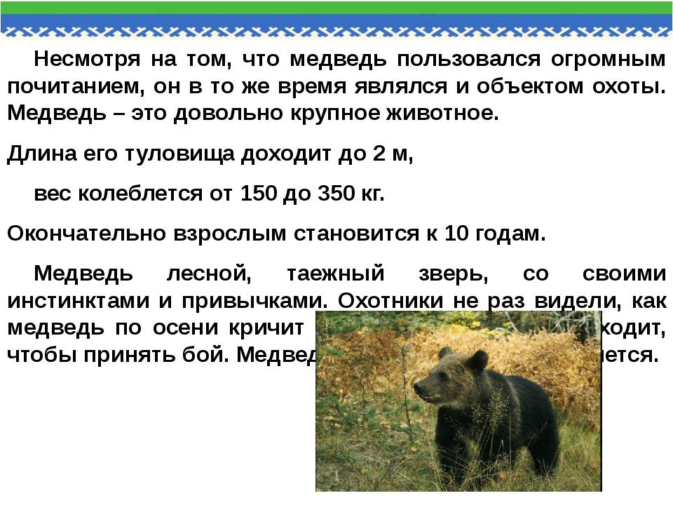 Несмотря на том, что медведь пользовался огромным почитанием, он в то же врем...