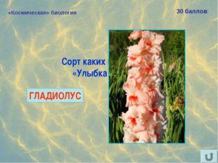 «Космическая» биология 30 баллов Сорт каких цветов назван «Улыбка Гагарина»?