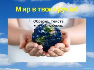 Мир в твоих руках!