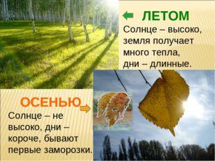 ЛЕТОМ Солнце – высоко, земля получает много тепла, дни – длинные. ОСЕНЬЮ Солн