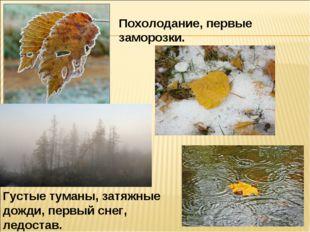 Похолодание, первые заморозки. Густые туманы, затяжные дожди, первый снег, ле