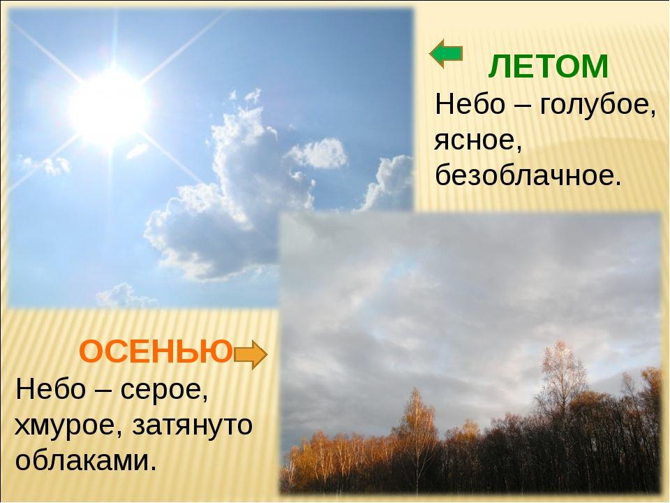 ЛЕТОМ Небо – голубое, ясное, безоблачное. ОСЕНЬЮ Небо – серое, хмурое, затяну...