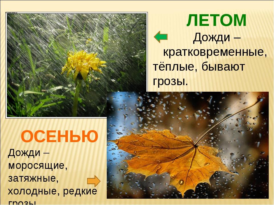 ОСЕНЬЮ Дожди – моросящие, затяжные, холодные, редкие грозы. ЛЕТОМ Дожди – кра...