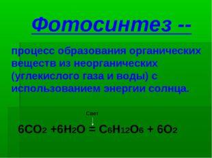 Фотосинтез -- процесс образования органических веществ из неорганических (угл