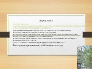 Информация http://vsepyaterki.ru/rushttps://ru.wikipedia.org/wiki/%D0%9D%D0%B