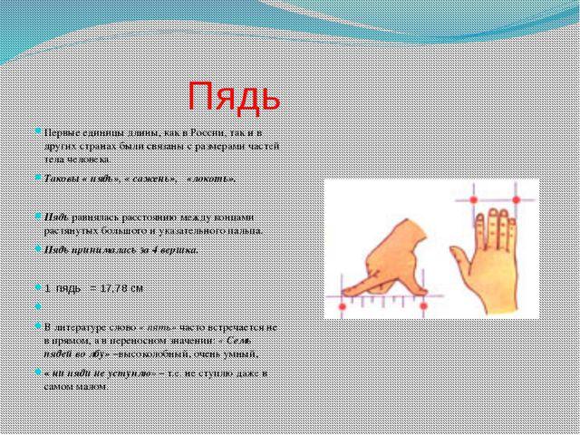 Пядь Первые единицы длины, как в России, так и в других странах были связаны...