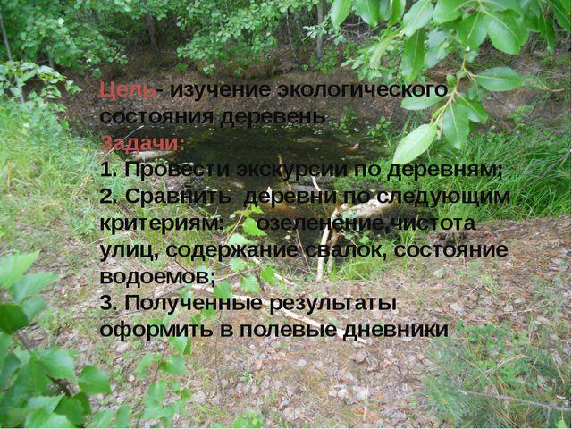 Цель- изучение экологического состояния деревень Задачи: 1. Провести экскурси...