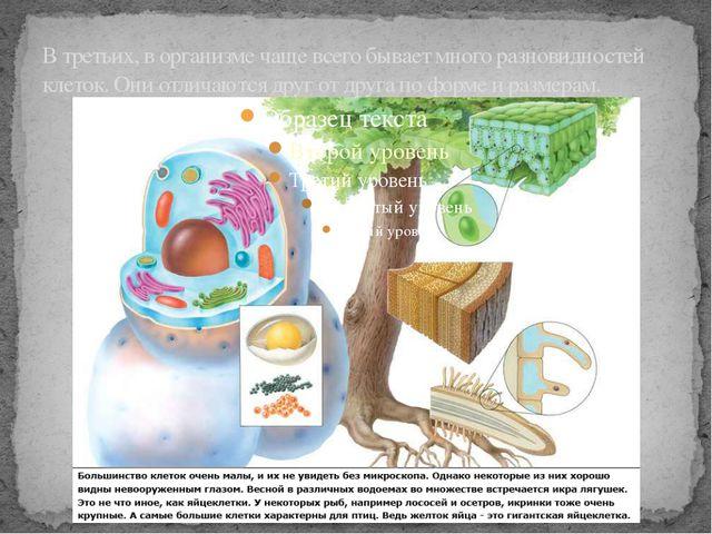В третьих, в организме чаще всего бывает много разновидностей клеток. Они отл...