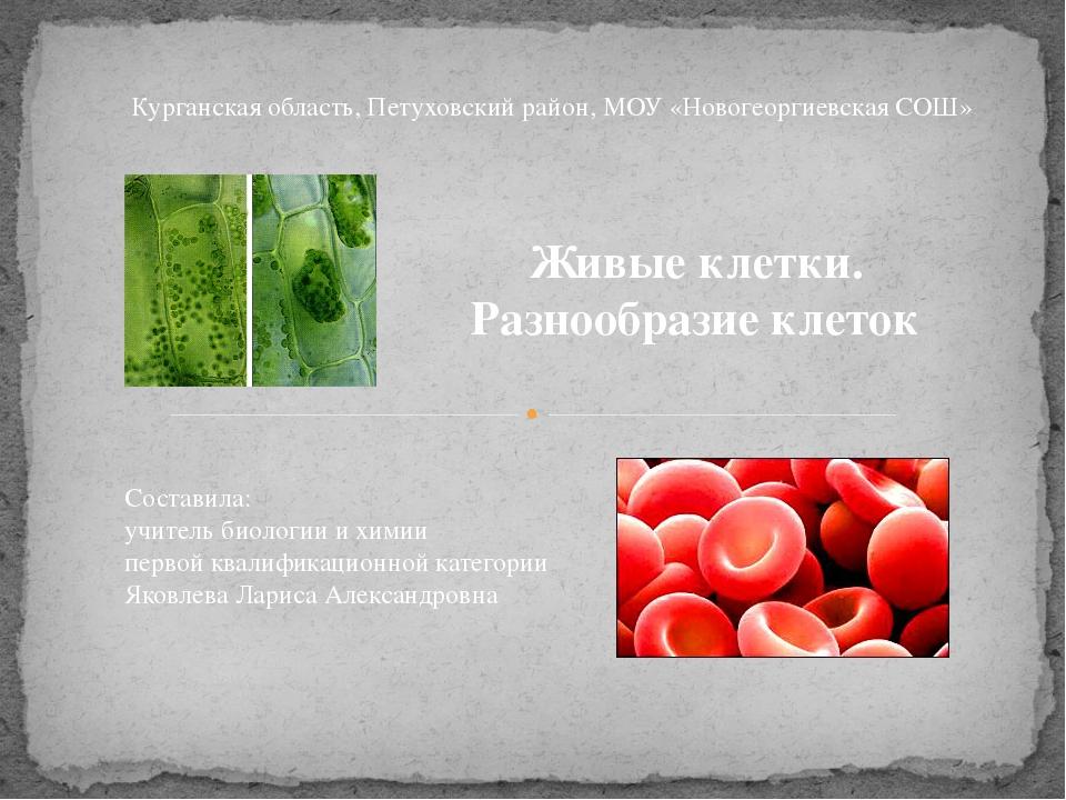 Живые клетки. Разнообразие клеток Курганская область, Петуховский район, МОУ...