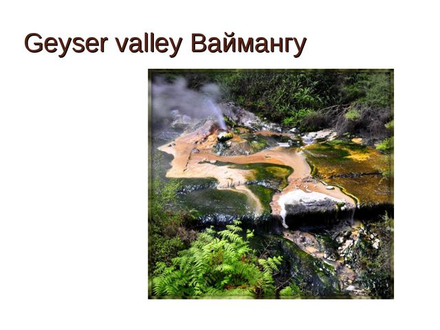 Geyser valley Ваймангу